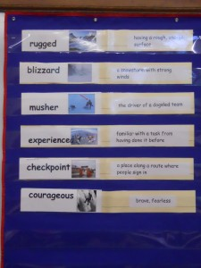 My vocabulary chart with the Santa Bonita picture cards.